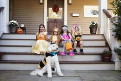 Children And Dog In Halloween Costumes For Trick Or Treating royalty free stock images