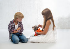 Children with dog Stock Image