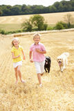 Children With Dogs Running Through Summer Harveste Stock Photos