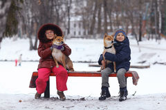 Children with dogs at winter park Royalty Free Stock Images