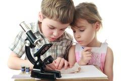 Children draw diagram near microscope Royalty Free Stock Image