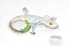 Children drawing - Lizard and egg shell Royalty Free Stock Photos
