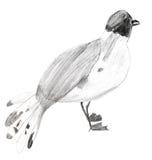 Children drawing - sterna bird Stock Photography