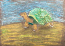 Children drawing - turtle by dry pastel Stock Image