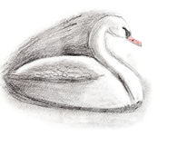 Children drawing - white swan Royalty Free Stock Photography