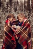 Children drink hot chocolate under warm blanket in winter forest. Christmas vacation. Children drink hot chocolate under warm blanket in winter forest stock images