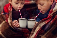 Children drink hot chocolate under warm blanket in winter forest. Christmas vacation. Children drink hot chocolate under warm blanket in winter forest royalty free stock photo