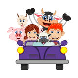 Children driving a car with cow, goat, sheep and pig cartoon vector illustration Stock Photos