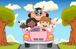 Children driving a car on the street with cow, goat, sheep and pig cartoon vector illustration. Full color stock illustration