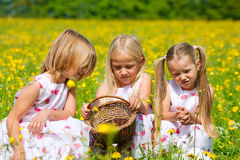 Children on Easter egg hunt with eggs Royalty Free Stock Image