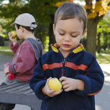 Children eating apple Royalty Free Stock Images