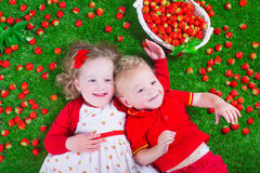 Children eating strawberry Royalty Free Stock Photo