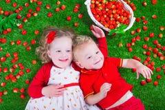 Children eating strawberry Royalty Free Stock Photo