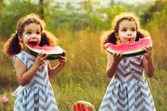 Children eating watermelon in the park. Kids eat fruit outdoors. Healthy snack for children. Little twins playing on the picnic bi. Child eating watermelon in Royalty Free Stock Images