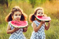 Children eating watermelon in the park. Kids eat fruit outdoors. Healthy snack for children. Little twins playing on the picnic bi. Child eating watermelon in Royalty Free Stock Image