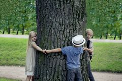 Children embracing tree. Environmental protection outdoor nature. Conservation outdoors.  royalty free stock images