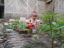 Children are engrossed with his own. Young children are gardening.although many of the other children play,he would still luke to plant flowers Royalty Free Stock Images