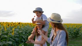 Children enjoy lollipops during walk in the field with sunflowers in straw hats together outdoors. Children enjoy lollipops during a walk in the field with stock footage