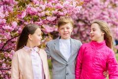 Children enjoy warm spring. Lost in blossom. Girls and boy friends posing near sakura. Kids on pink flowers of sakura. Tree background. Kids enjoying cherry royalty free stock photography