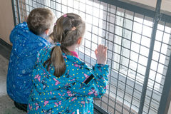 Children in the entrance looking at the street through the bars and window. Boy`s and girl`s jackets and pants sit with their back to us and hold onto the bars Stock Images