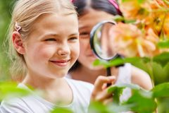 Children explore nature in garden with loupe. Children explore nature in garden using loupe with curiosity stock photography