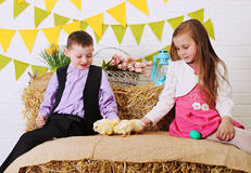Children fed chickens Royalty Free Stock Images