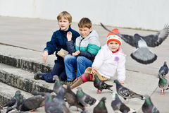 children feeding doves Royalty Free Stock Image