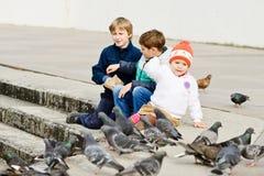 Children feeding doves Stock Images