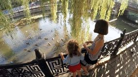 Children feeding ducks in a town park . Child in autumn park feeding the ducks stock video