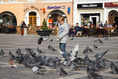 Children feeding pigeons Royalty Free Stock Photography