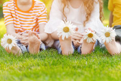 Children Feet With Daisy Flower On Green Grass Royalty Free Stock Images