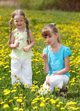 Children in field with flower. Royalty Free Stock Photos