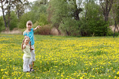 Children in field with flower. Royalty Free Stock Image