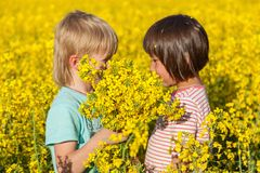 Children in the field with the flowering Stock Photo