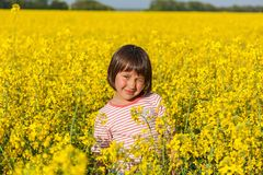 Children in the field with the flowering. Yellow flowers of stock photography