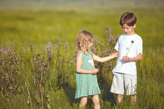 Children in the field at sunny summer morning Stock Photos