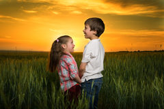 Children in a field at sunset Royalty Free Stock Images
