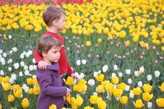 Children on field of tulips Stock Photo
