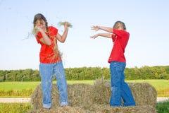 Children fighting. Royalty Free Stock Image