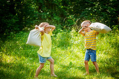Children fighting together with pillows in a sunny summer garden Stock Photography