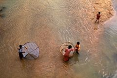 Children Fisheries. A group of poor Children collecting fish with small net in a river in India Stock Photography