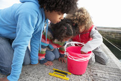 Children fishing for crabs. At the sea stock photography