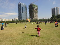 The children are flying kites. Stock Image