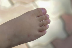 Children foot Royalty Free Stock Photography