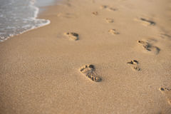 Children footprints in the sand. Human footprints leading away from the viewer. A row of footprints in the sand on a beach in the Stock Images