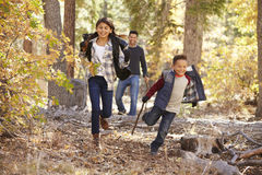 Children in a forest running to camera, father looking on Royalty Free Stock Photography