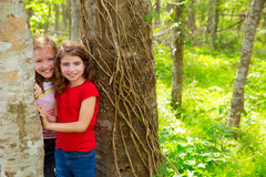 Children friends playing in tree trunks at the jungle park Royalty Free Stock Photos