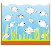 Children game: only two equal fishes. A funny game for kids: There are many fishes in the aquarium but only two fishes have equal shapes and pattern. Find out Stock Image