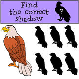 Children games: Find the correct shadow. Cute bald eagle sits smiles. Children games: Find the correct shadow. Cute bald eagle sits and smiles Stock Photo