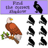 Children games: Find the correct shadow. Cute bald eagle sits on the tree branch. Children games: Find the correct shadow. Cute bald eagle sits on the tree Royalty Free Stock Photos